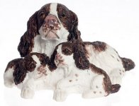 Miniature English Springer Spaniel with Puppies