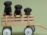 Miniature Three Rottweiler Puppies in a wagon by Karl Blindheim