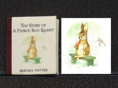 Miniature Illustrated Book: 'The Story of A Fierce Bad Rabbit'