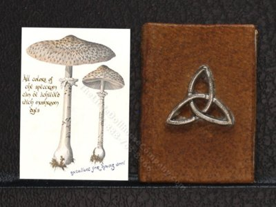 Miniature Book: 'Charms'