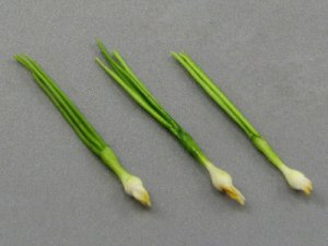 Dollhouse Scale Model Green Onion