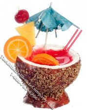 Dollhouse Scale Model Coconut Fruit Punch Drink