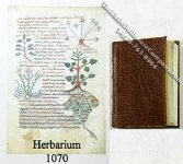 Dollhouse Miniature Herbarium Book