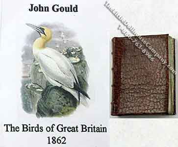 Miniature Book: 'Birds of Great Britain' by John Gould