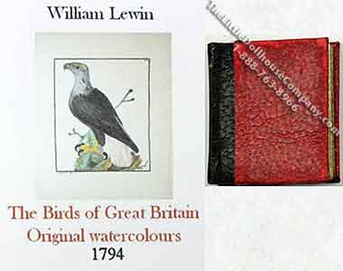Miniature Book: The Birds of Great Britain Original Watercolours